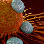 Nobel Prize for Medicine to Researchers Who Discovered New Way To Treat Cancer